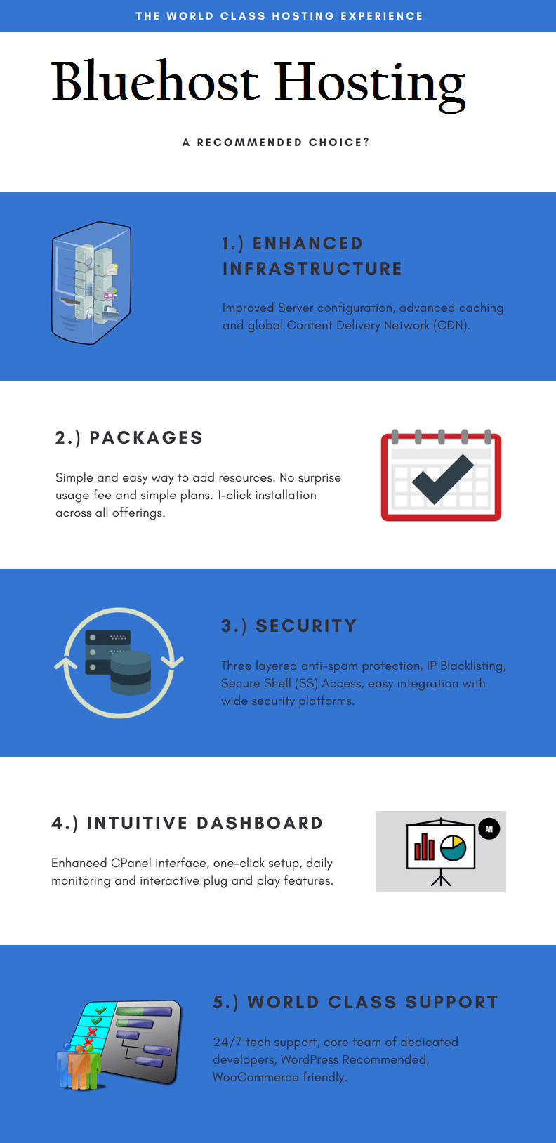 Bluehost Review Infographic