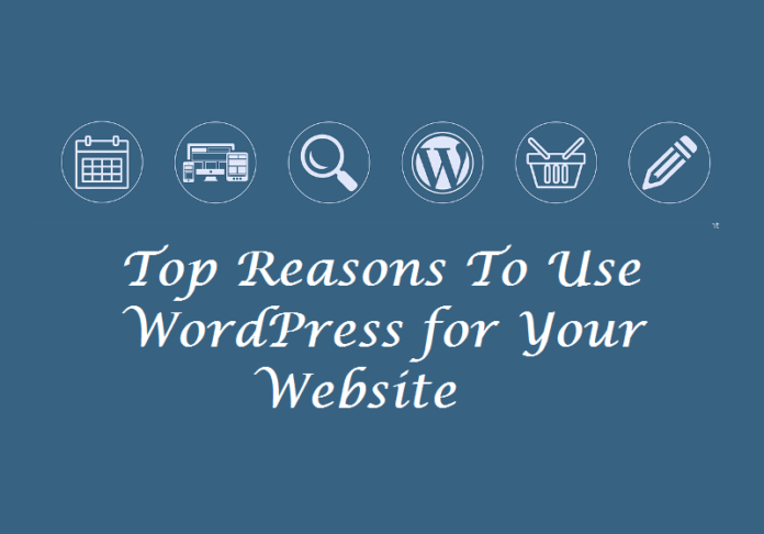 Top Reasons To Use WordPress for Your Website