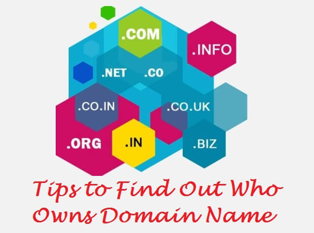Who Owns Domain Name